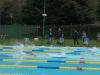 dp-plavanje-kamnik-2020